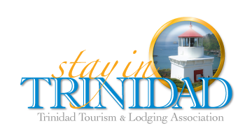 Stay In Trinidad - Tourism and Lodging logo spyglass with Trinidad Memorial Lighthouse the Bay and the Head